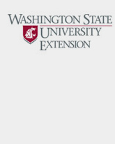washstate